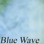 Blue Wave Last Nights PhotoBooth Backdrop for Photo Booth Rental